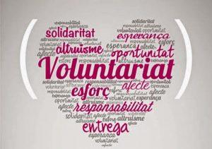El 5 de desembre celebrem el Dia Internacional del Voluntariat @ A tot el món